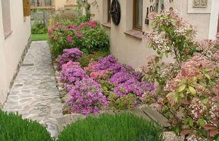 Diseñar un jardín.