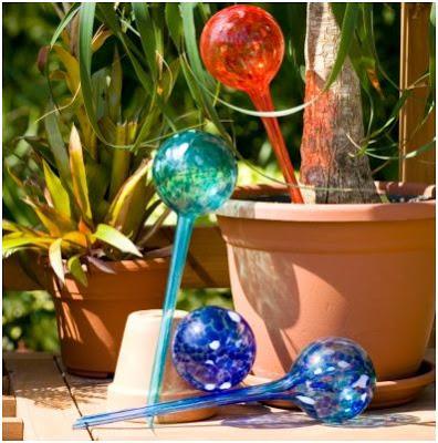 solucion para regar las plantas en vacaciones aqua globes