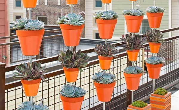 Plantas en balcones pequeños.