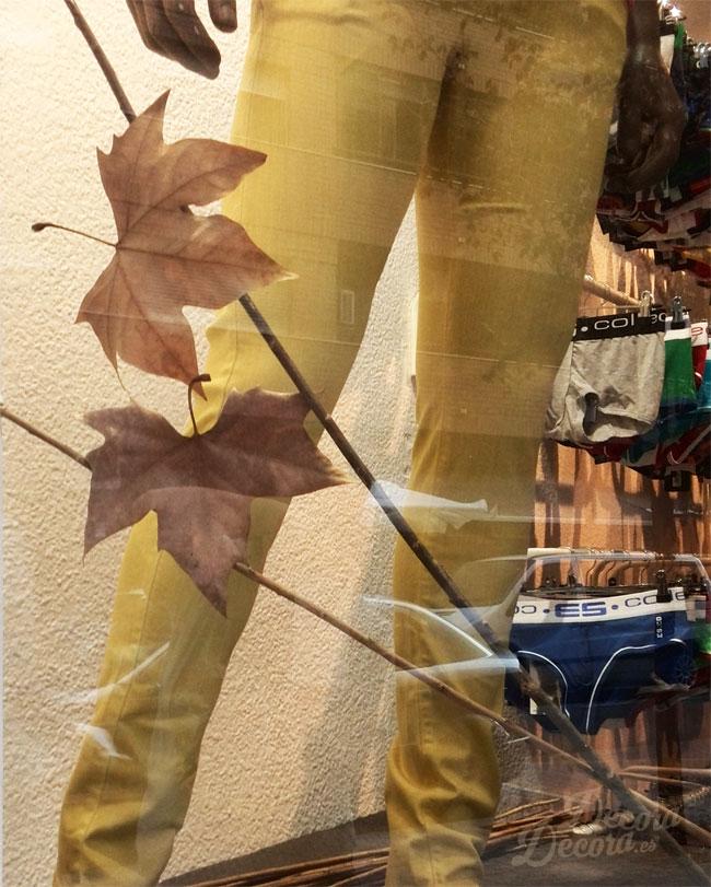 Diseño escaparate otoño