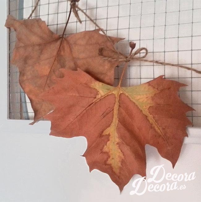 Idea de decoración para otoño