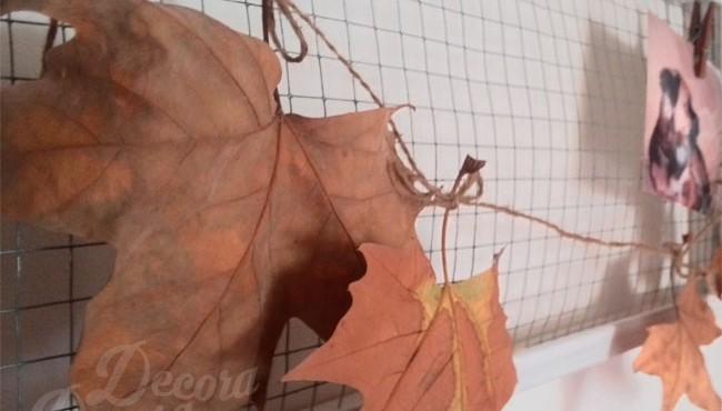 Idea otoño
