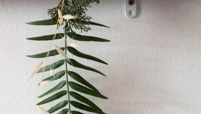 Decorar ramas