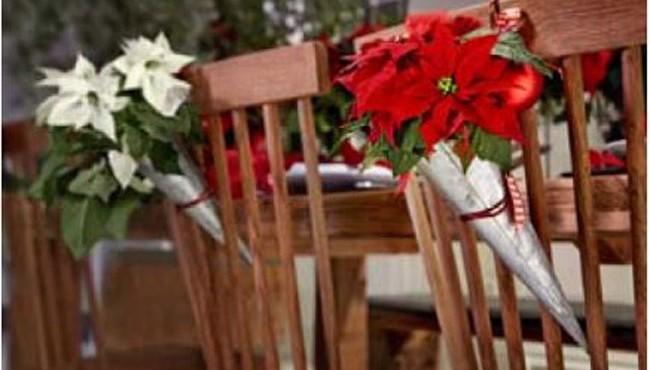 Ideas para decorar en Navidad con poinsetias