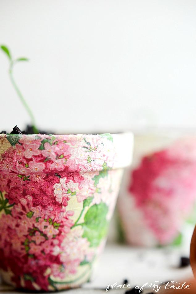 Decorar macetas con flores